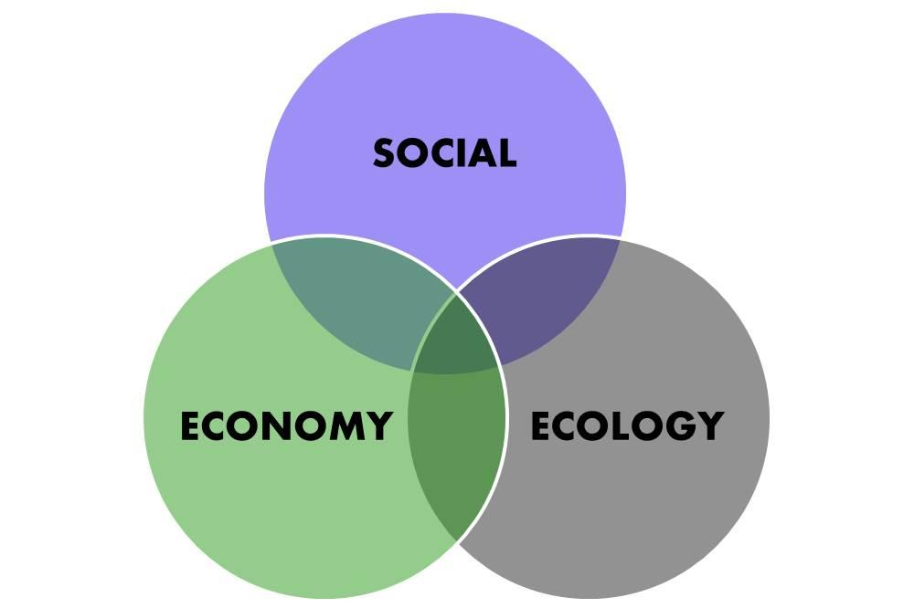 sustainable development initiative community development