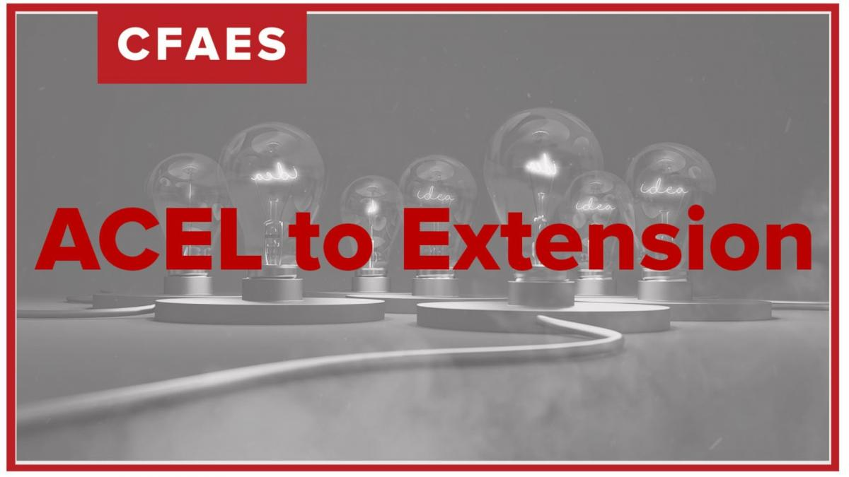 ACEL to Extension