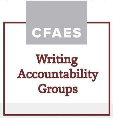 Writing Accountability Groups