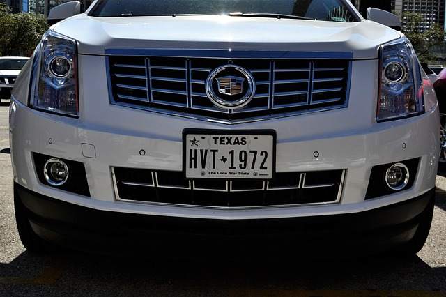 License Plate - front facing