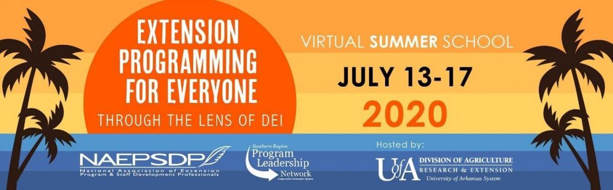 NAEPSDP Virtual Summer School 2020
