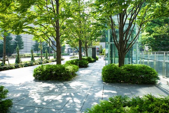 Getting the Green Light for Green Infrastructure